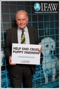 Sir-Roger-Gale-Conservative-Animal-Welfare-Foundation-Patron-at-IFAW-pups-202x300 (2)