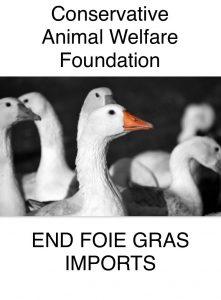 foie gras cawf