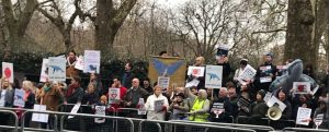 whaling march road embassy conservative animal welfare foundation