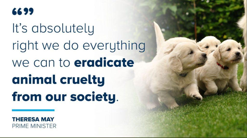 puppy cruelty PM