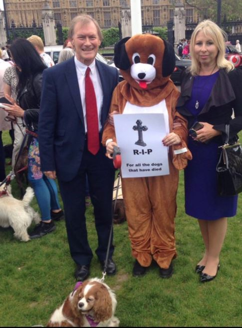 david amess conservative animl welfare foundation ban puppy farms