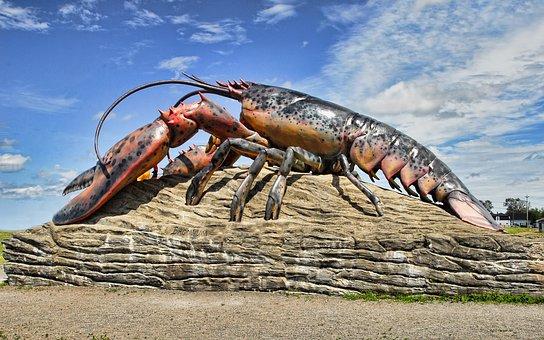 lobster-2358898__340