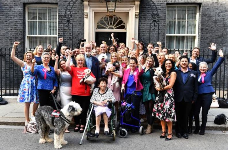 group pic conservative animal welfare foundation website lucys law