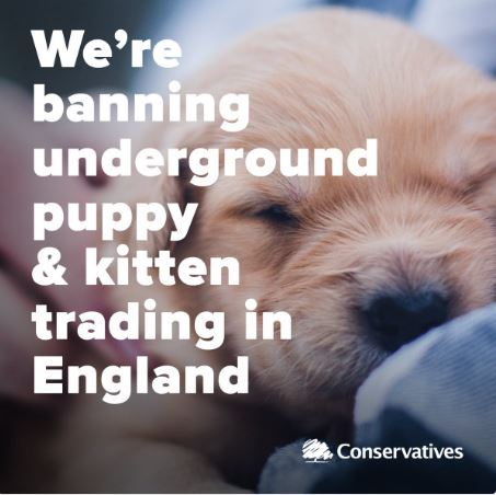 puppy sales ban conservative animal welfare foundation share