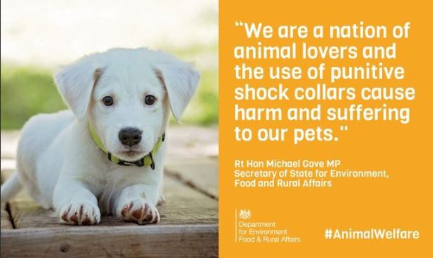 ban electric collars govt announcement pic